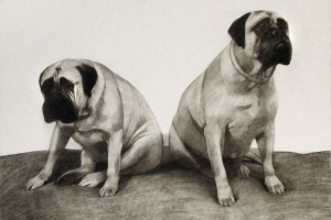 2-dogs