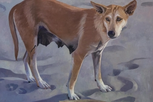 beach-dog-2